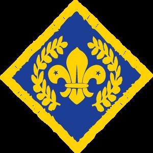 Chief Scout's Diamond Award