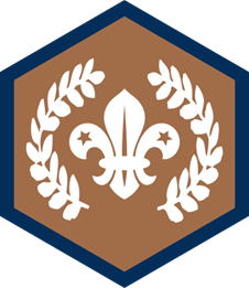 Chief Scout's Bronze Award